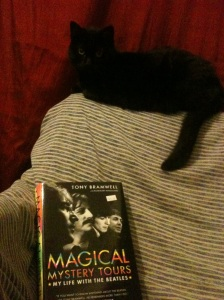 Ringo Cat and Magical Mystery Tours
